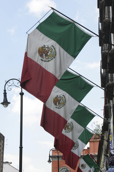 banderas tergal